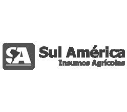 Sul Almérica Insumos (Paraguai)
